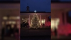 gkt-attorney-blog-christmas-tree-lighting-tree-color-730x410
