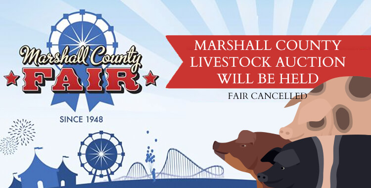 Marshall County Livestock Auction Will Be Held